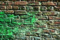 Wall Turning Green