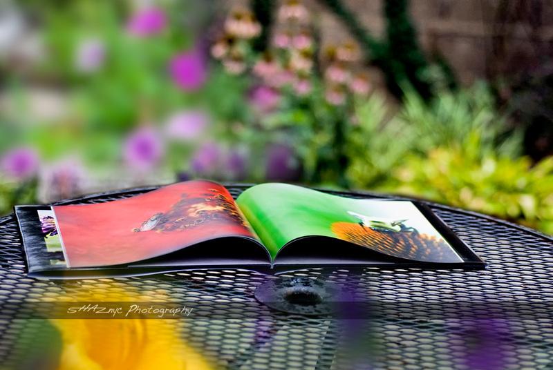frist burb Book